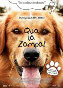 QUA LA ZAMPA! (A DOG'S PURPOSE)